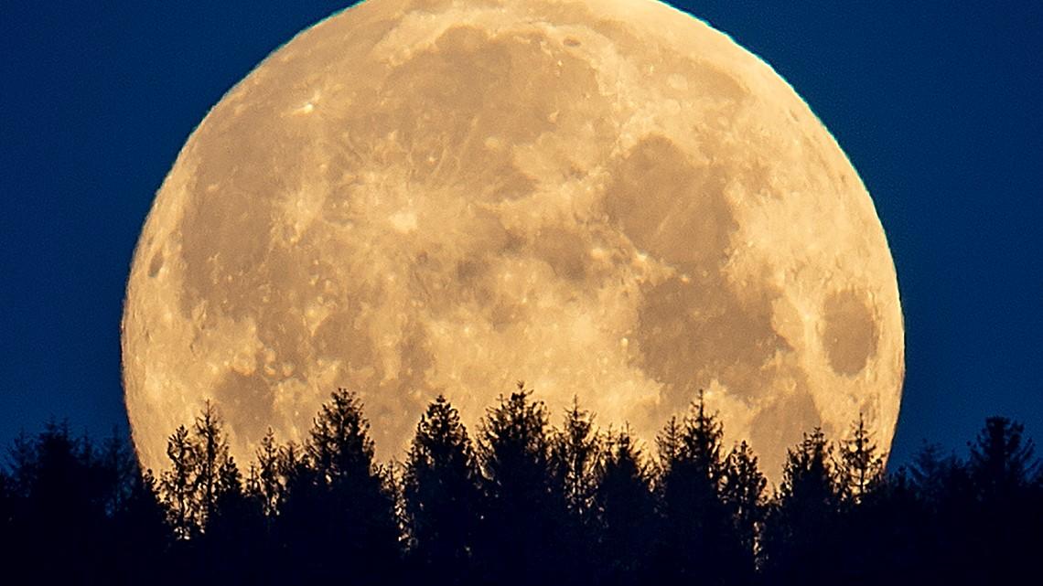 Moon 'wobble' affect rising tides